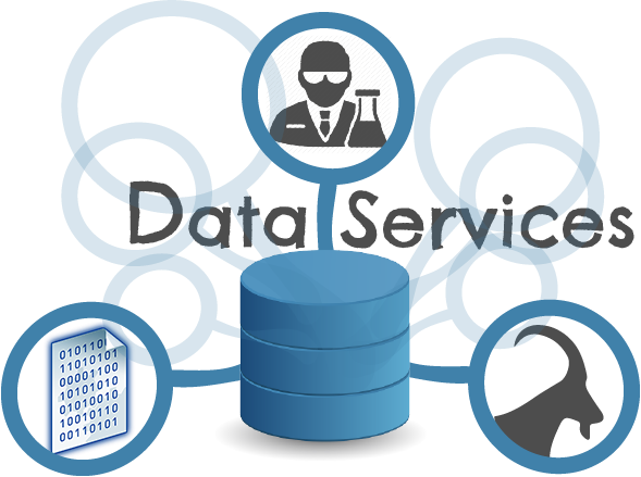 data services Simplify your business operations with rackspace managed database services we match your business objectives by assessing business requirements, architecting database solutions, and hosting on an optimized platform.